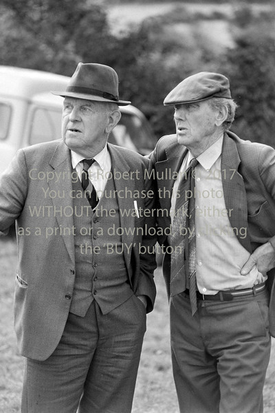Coakley Byrne, Barndarrig with Peter Byrne of Roundwood at a ploughing match - 1980s/90s