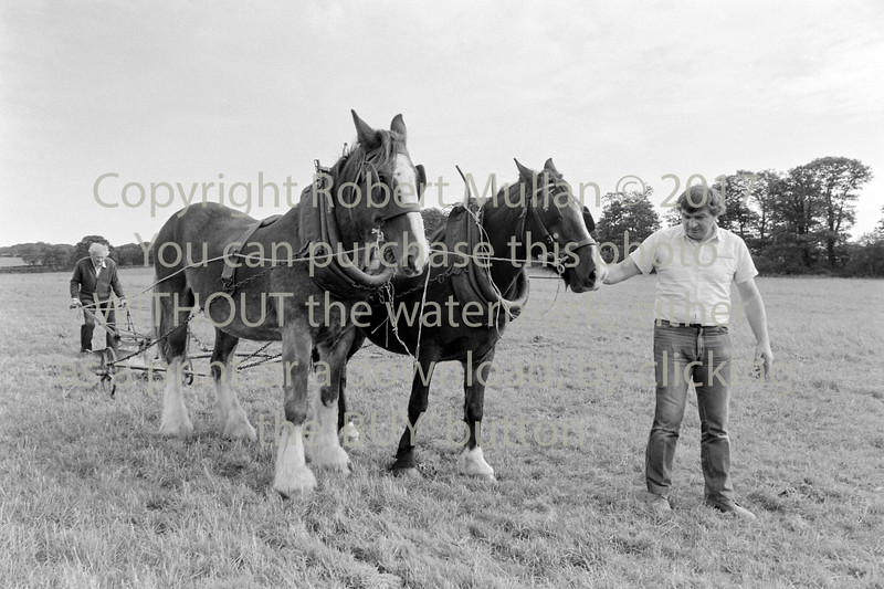 Jack Halpin of Roundwood and his son, Vincent at a ploughing match - 1980s/90s