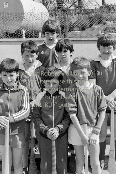 Young hurlers from Wicklow - 1980s/90s