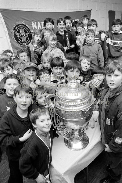 A group of boys in St Patrick's GAA Club, Wicklow - 1980s/90s