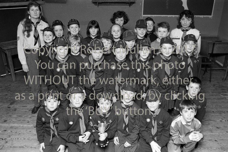 Wicklow scouts - 1980s/90s