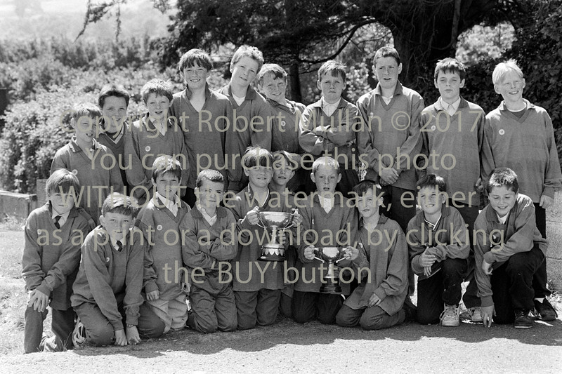 Junior Cup winners from Wicklow - 1980s/90s
