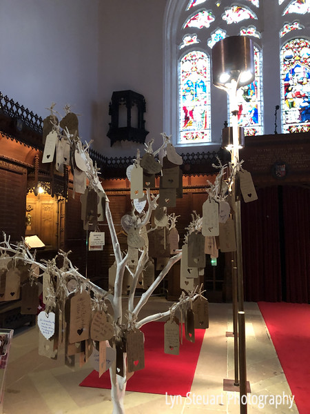Prayer Tree at King's College -my prayer is the one on the right at the top!!!