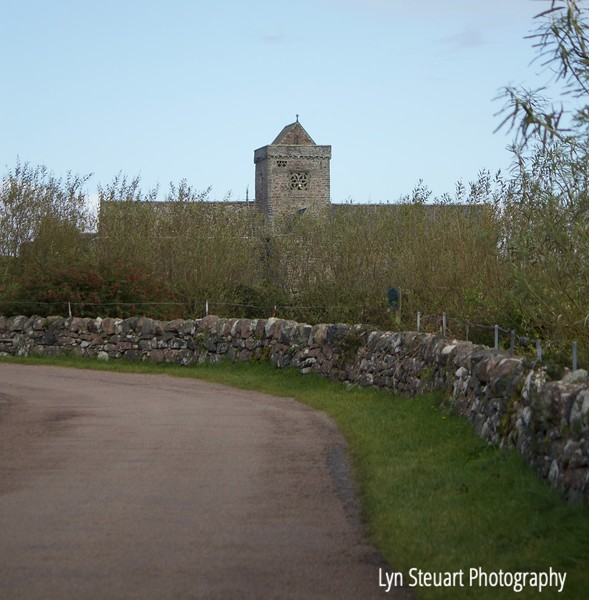 Typical rock wall lines the road to the Abbey at Iona