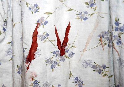 Diannia found herself in the back yard (with all house doors securely locked) about 3 a.m. one morning (thankfully it was summer!!) and when she came in, she noticed this blood stain on her night gown. She had NO wounds anywhere on her body that the blood could have come from...