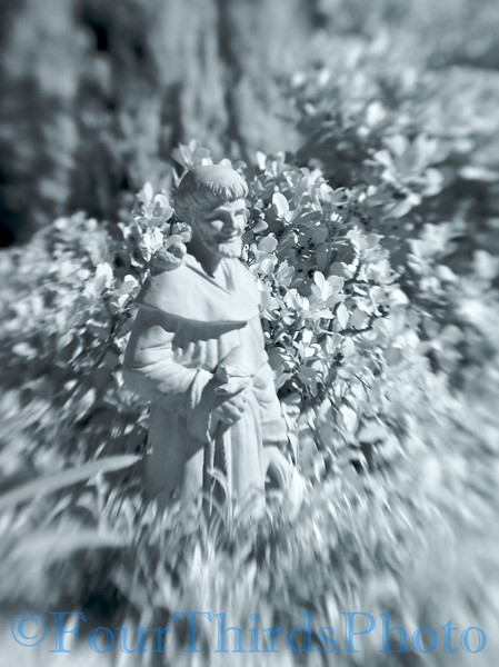 Lens Baby Composer - Double barrel - Infrared