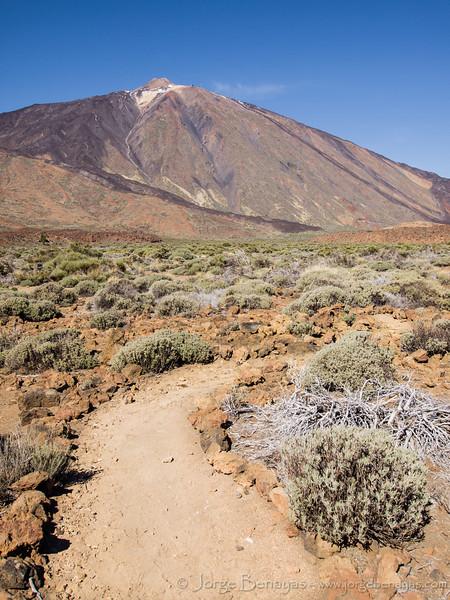 Camino del Teide