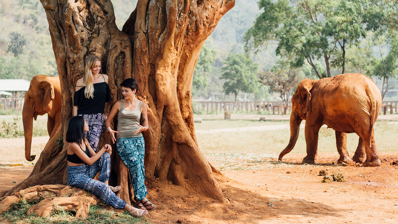 One Tribe Apparel benefits the Elephant Nature Park in Chiang Mai.
