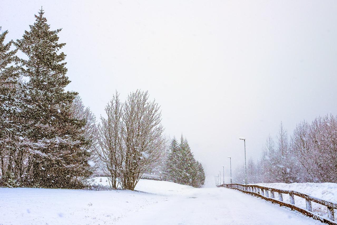Snowy April 2014