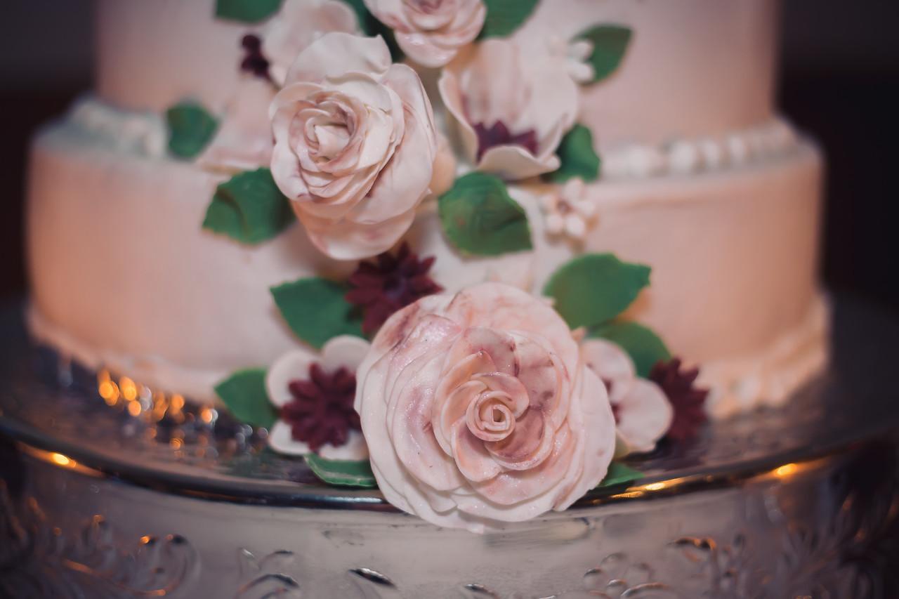 lexington columbia sc wedding photographer (148 of 180)