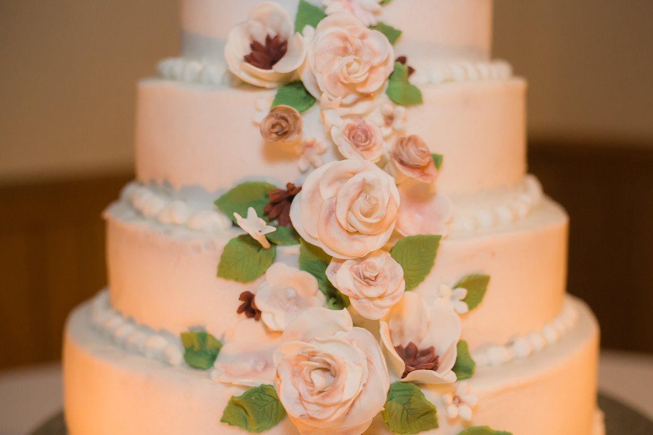 lexington columbia sc wedding photographer (4 of 65)