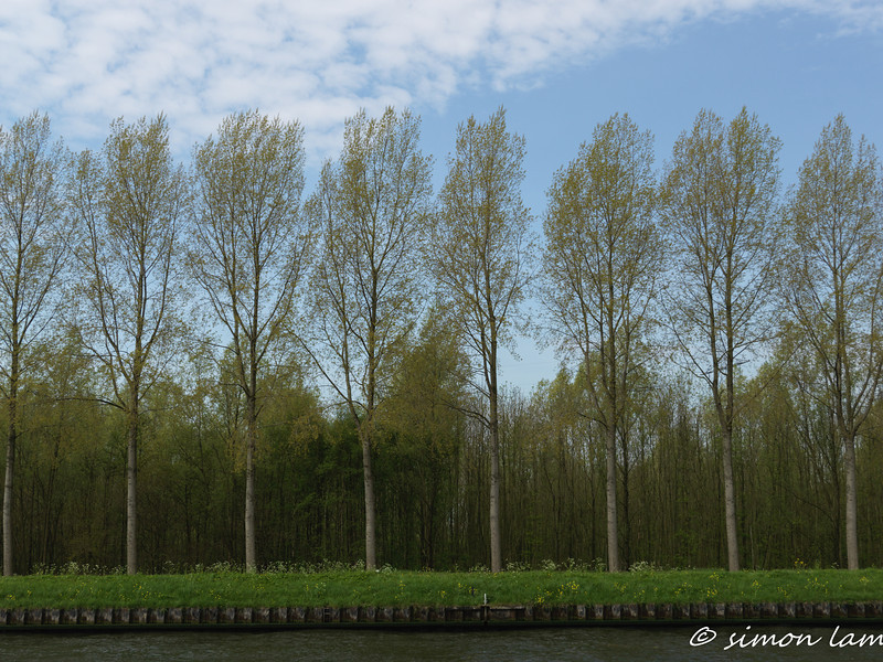 Amsterdam_14 04_4500628