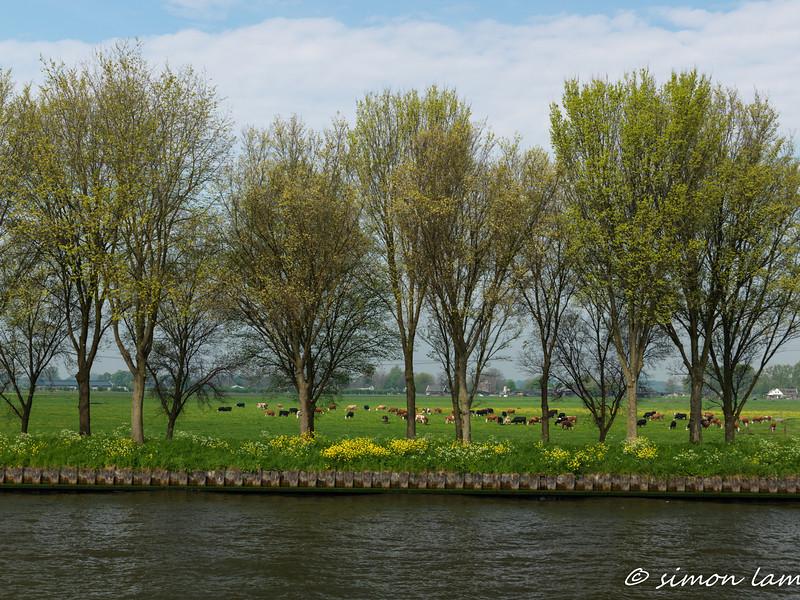 Amsterdam_14 04_4500622