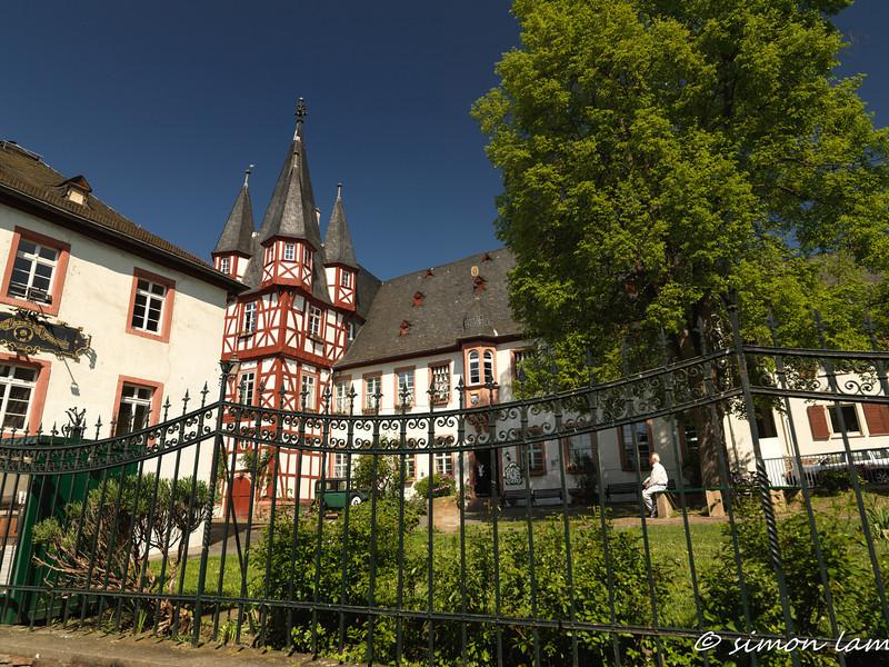 Rudesheim_14 04_4500222