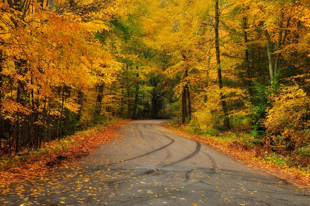 Fall Colors of Rhode Island