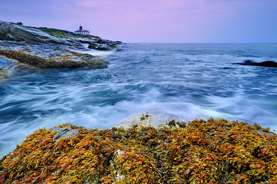 Beavertail State Park, Jamestown, Rhode Island.