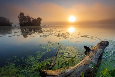 Turner Sunrise