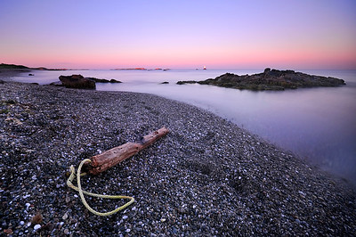 Driftwood On Sakonnet Point Beach At Sunrise