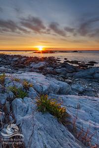Sachuest Point Sunrise