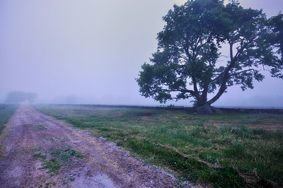 Morning fog, Jamestown, Rhode Island