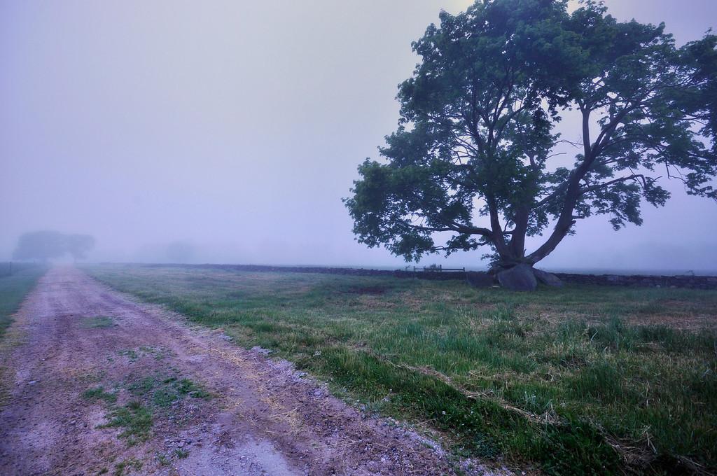Morning fog, Jamestown, Rhode Island