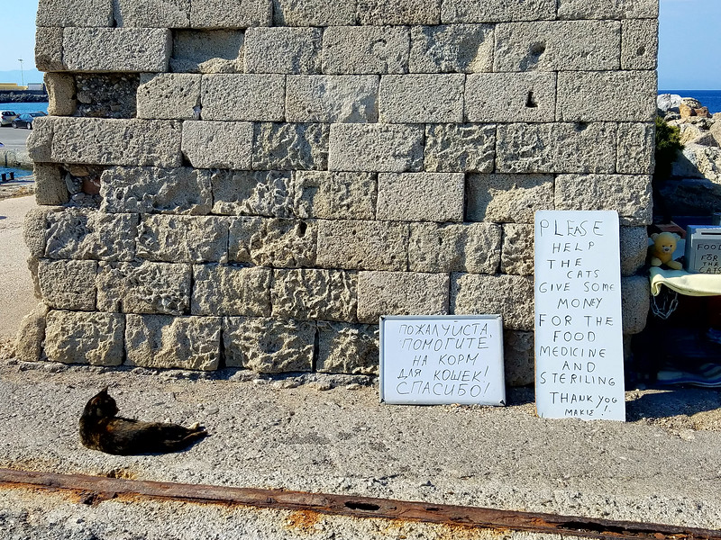 This sign alludes to the stray cat problem in Greece.  In this area of Mondraki harbor, a number of cats hang ut and are fed as needed with food purchased from donations (allegedly).