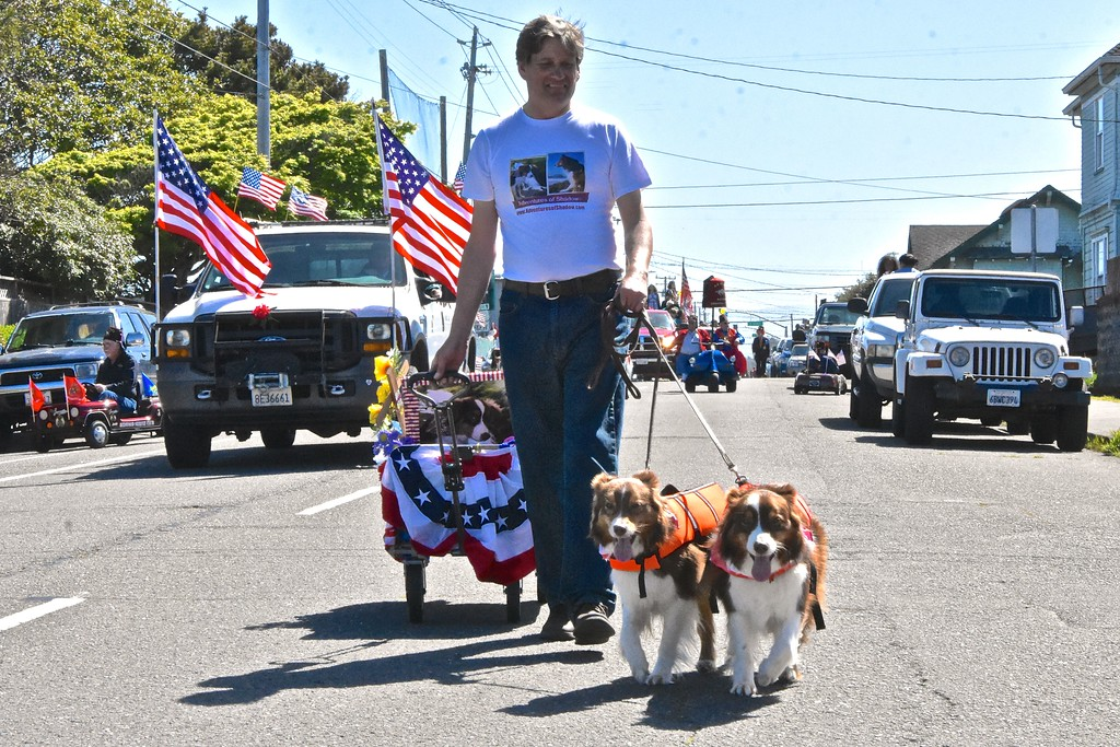 ". ""Shadow\"" Odonnell and \""Stormy\"" Odonnell, stars of Friends of Canine Heroes Memorials, take a dog walk down Henderson Street. (Jose Quezada - For the Times-Standard)"