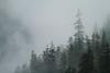 Misty Fiords National Monument, Alaska