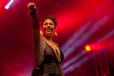 Morcheeba at Rhythmtree 2018