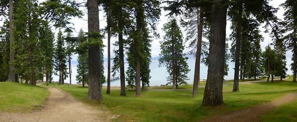 029 Lake Tahoe -Sugar Pine View