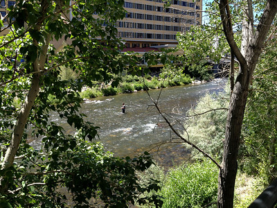 Reno River walk near RRR1 rally parking.  Notice Fishing in the Truckee mid screen