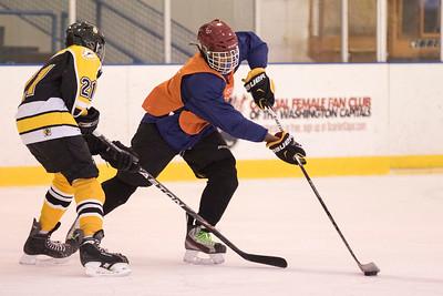 hockey ricardo