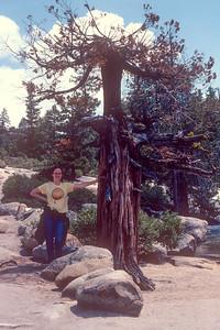 1980-05 Yosemite CA Honeymoon-7