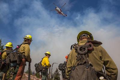Rice Ridge Fire (MT, 2017)