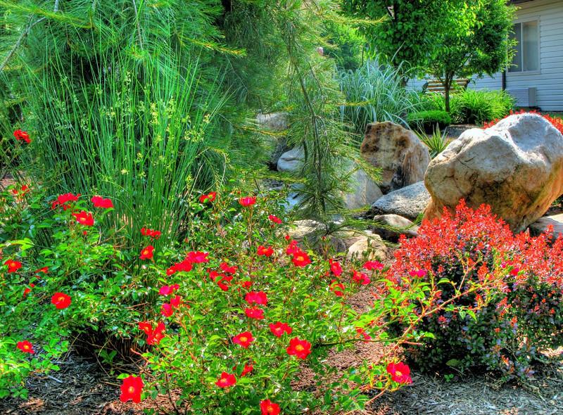 Maple Shade Meadows' Garden HDR