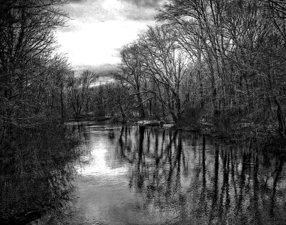 Pond in Black & White