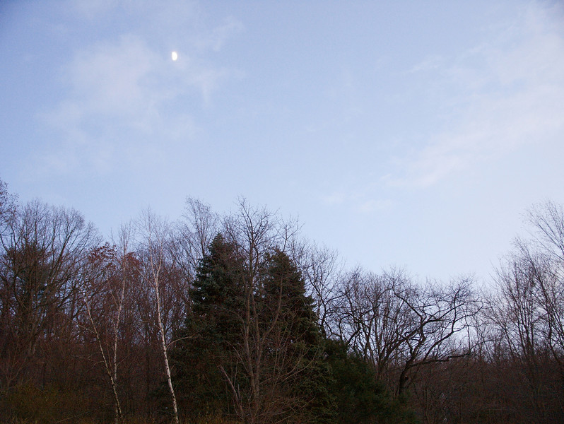 The Moon Is Rising