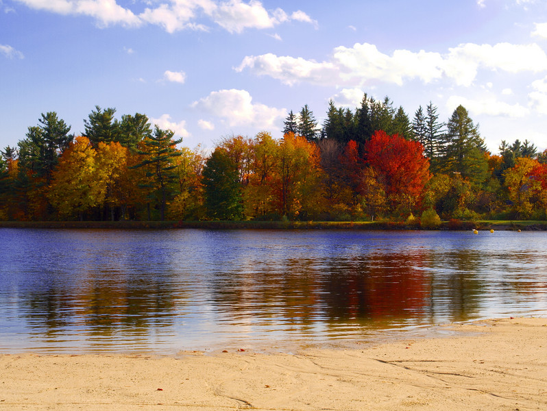 Trees and water at a Poconos Beach