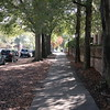 2017-11-13 Autumn Walking Tour Along Senate Street-View up Barnwell Street to USC Campus 1