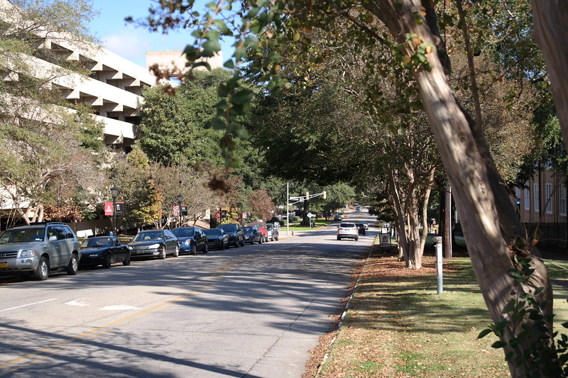 2017-11-13 Autumn Walking Tour Along Senate Street-View east looking down Senate Street
