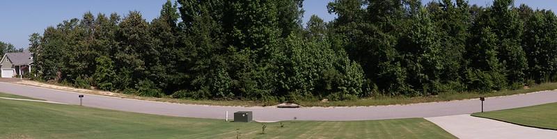 Panorama Audubon Lane 02