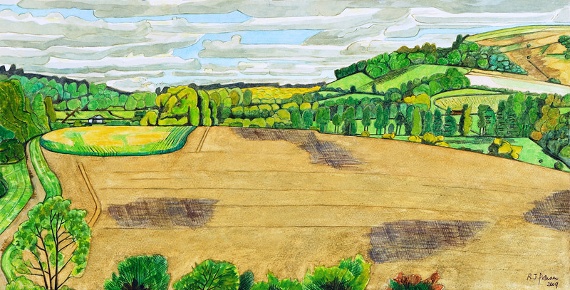 Summer - Looking towards Beacon Hill at Woodcot