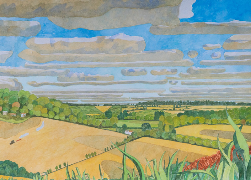 Summer - Wheat and oilseed rape fields at harvest