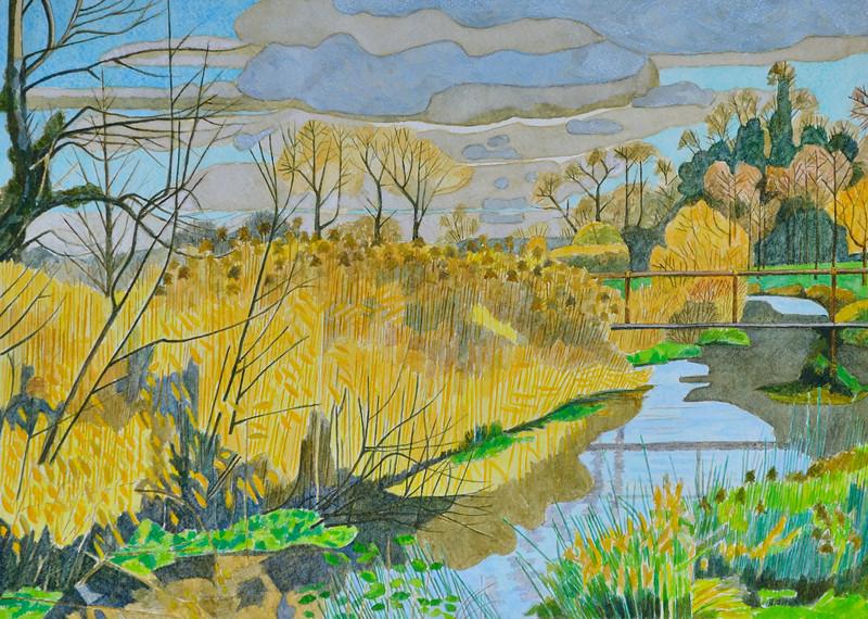 River Kennet - November 2013