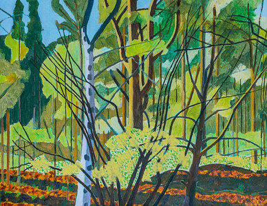 Landscapes in the Woods - Berkshire - Spring 2021