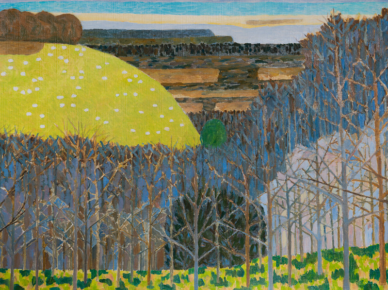Winter - View across the valley to Highclere Castle -  Richard Pelham Landscapes