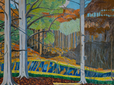 Landscapes in the Woods - Berkshire - Winter 2020- 2021
