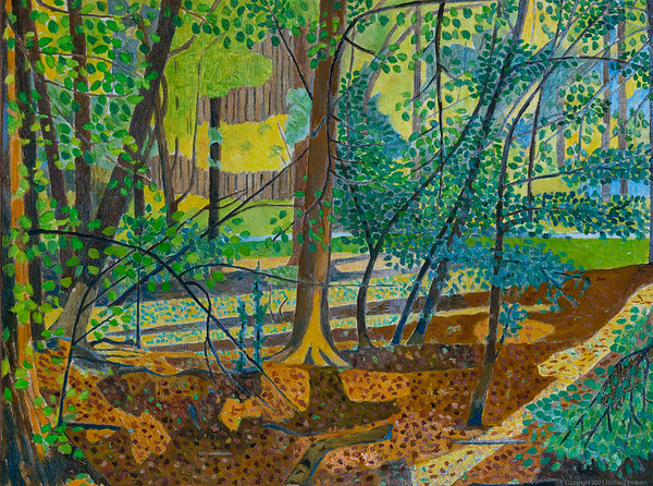 Landscapes in the Woods - Berkshire - Spring 2020