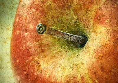 Texture Apple