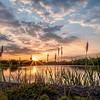 Mill Pond Sunset